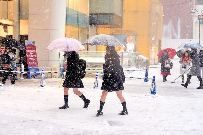 Mặc cho tuyết rơi trắng trời, nữ sinh Nhật Bản vẫn kiên cường diện váy ngắn xinh xắn tới trường - Ảnh 11.