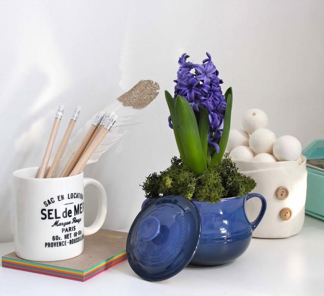 Gợi ý trồng cây, trồng hoa siêu ngọt ngào trong bộ ấm chén, bạn đã sẵn sàng để đón mùa xuân? - Ảnh 12.