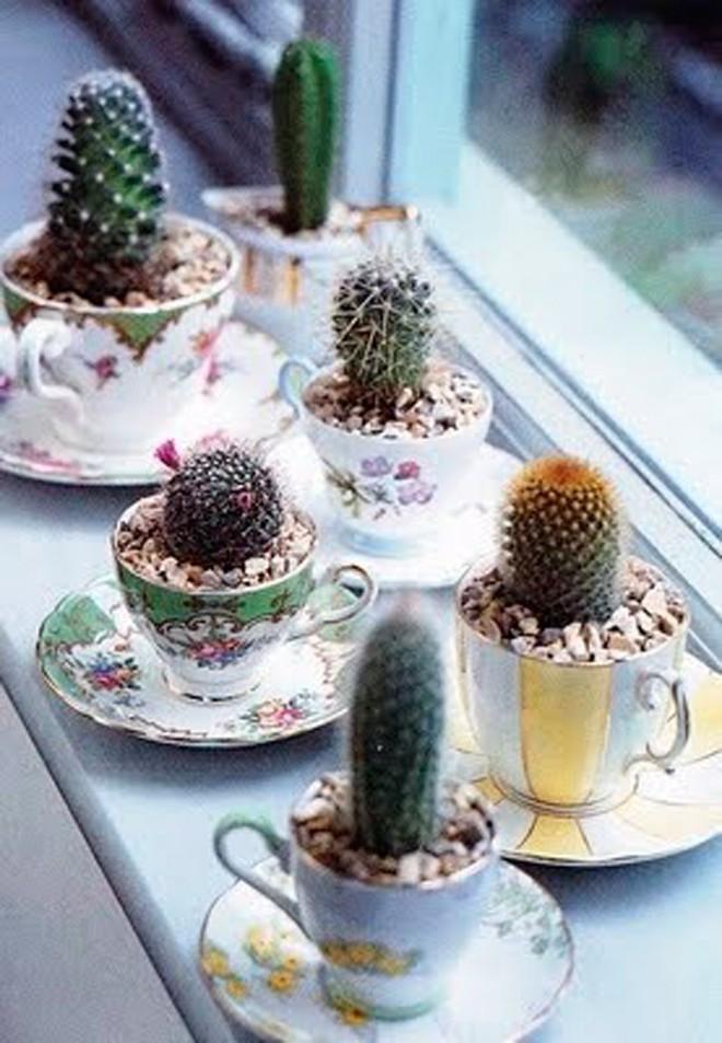 Gợi ý trồng cây, trồng hoa siêu ngọt ngào trong bộ ấm chén, bạn đã sẵn sàng để đón mùa xuân? - Ảnh 18.