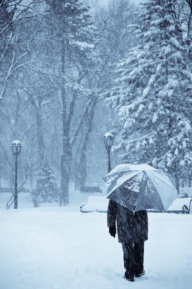 Nếu mùa đông nào cũng thấy buồn bã và ủ dột, đừng coi thường vì có thể bạn đang mắc bệnh đấy - Ảnh 3.