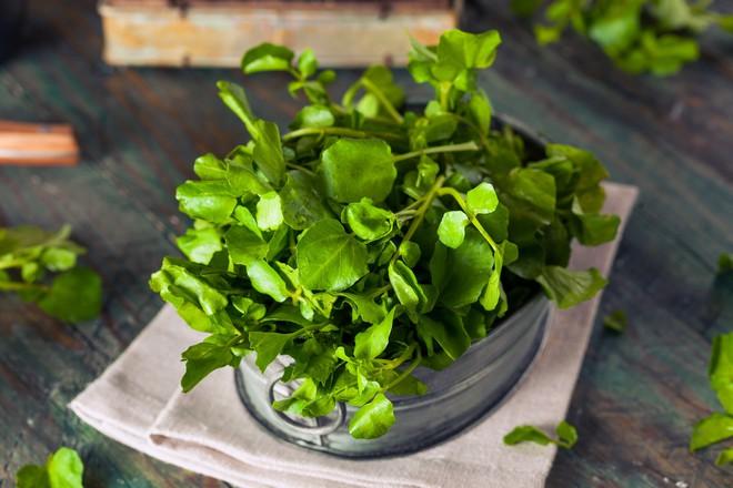 Vô vàn lợi ích từ rau cải xoong được chuyên gia Đông y nhấn mạnh đừng bỏ qua vào mùa đông này - Ảnh 1.