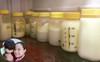 MC Khánh Ly: Nuôi 2 con bằng sữa mẹ hoàn toàn vẫn dư sữa trữ đông dù ăn rất ít