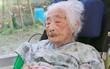 """Cụ bà người Nhật qua đời ở tuổi 117, nhường danh hiệu """"người cao tuổi nhất thế giới"""" cho một cụ bà cùng quốc tịch"""