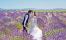 """Cặp đôi """"yêu 1 tháng, chia tay 3 tháng"""" và bộ ảnh cưới vạn người mê tại những địa danh nổi tiếng nhất châu Âu"""