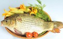 Lợi ích bất ngờ của cá chép với sức khỏe