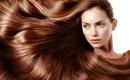 4 mái tóc