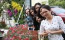 Hà Nội: Nhầm lịch tổ chức lễ hội hoa anh đào, hàng trăm chị em ngậm ngùi