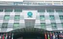 TP.HCM: Bà mẹ 2 con chết bất thường sau khi tiêm thuốc dị ứng tại bệnh viện An Sinh