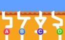 Dự đoán đường hầm dẫn nước nhanh nhất để biết mình thuộc dạng thiên tài nào