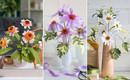 Mách bạn cách làm hoa cúc giấy cực xinh cực dễ