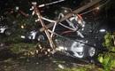 TP.HCM: Cây bật gốc kéo theo trụ điện đè hỏng 7 ô tô, người đi đường hoảng loạn bỏ chạy
