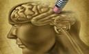 Phát hiện bất ngờ: Chơi game có thể ngăn chặn bệnh Alzheimer