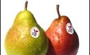 Trên quả táo hay lê nào cũng có những lỗ nhỏ li ti, bạn biết vì sao không?