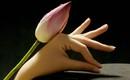 """Xòe tay ra xem, ngón tay phụ nữ """"số sướng"""" có đặc điểm thế này"""