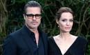 Angelina Jolie chặn tất cả cuộc gọi đến và tin nhắn của Brad Pitt