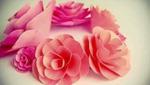 Cuối tuần trổ tài khéo tay làm hoa hồng giấy cực xinh