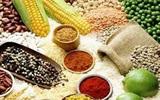Thực phẩm nào tốt cho sức khỏe hệ đường ruột?