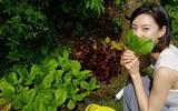 """Cuộc sống đúng chất """"tận hưởng"""" của bà xã Bae Yong Joon trong biệt thự triệu đô"""