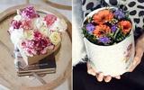 3 cách cắm hoa trong hộp quà xinh lung linh bạn cần bỏ túi