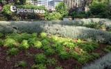 Có một công viên tràn ngập rau xanh và rau ở đây được phát hoàn toàn miễn phí