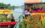 Chợ hoa kiểng bên sông rộn ràng, đẹp rực rỡ trên những chiếc ghe ngày giáp Tết