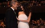 Từng tuyên bố không kết hôn nhưng tài tử George Clooney lại tình tứ dìu vợ bầu thế này