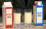 Sữa organic hay sữa thường? Câu trả lời thông minh cho các mẹ ở đây!