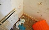 Anh: Giải cứu 4 đứa trẻ bị bố mẹ bỏ đói trong căn phòng bẩn thỉu đầy phân, ruồi nhặng