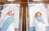 Hình ảnh 2 đứa bé sơ sinh nằm cạnh giường nhau trở nên nổi tiếng vì một lí do không ai ngờ tới