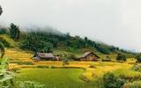 Sa Pa được tạp chí Tây bình chọn là một trong những điểm du lịch mùa thu không thể bỏ lỡ