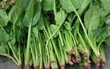 Những loại rau củ gây nguy hại tới sức khỏe nếu ăn sống, bạn nên biết để tránh