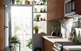 Trồng cây trong nhà bếp vừa trang trí vừa giúp bạn ăn ngon hơn, sống khỏe hơn