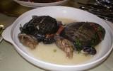 Rùng mình với súp rùa sống - món ăn kinh dị và tàn nhẫn nức tiếng Trung Quốc