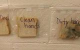"""3 lát bánh mì này sẽ khiến bạn """"thức tỉnh"""", nhắc nhở con và bản thân phải rửa tay trước khi ăn"""