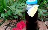 Đừng mua siro chống cảm cúm nữa, ra chợ mua ngay loại lá này về tự làm quá rẻ và hiệu quả!