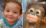 Loạt ảnh hài hước cho thấy trẻ con và động vật là cặp