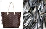 Được cháu tặng túi xách hàng hiệu nghìn đô, cụ bà mang đi đựng... cá tươi
