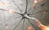Căn bệnh ALS khiến nhà vật lý nổi tiếng Stephen Hawking tử vong nguy hiểm thế nào?