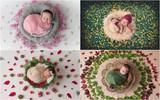 Ngất ngây với chùm ảnh những em bé sơ sinh cuộn tròn say ngủ