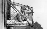 """Phát minh kỳ lạ nhất thế kỷ 20: Những chiếc lồng sắt """"phơi"""" trẻ em bên ngoài cửa sổ khiến nhiều người đứng tim"""