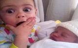 Biểu cảm siêu đáng yêu của các nhóc tỳ khi gặp em bé mới sinh