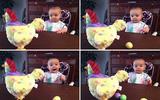 Biểu cảm siêu đáng yêu của bé khi xem... gà đẻ trứng