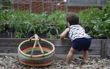 23 kỹ năng sống bố mẹ có thể tự dạy con càng sớm càng tốt