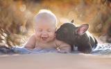 Bộ ảnh siêu yêu của bé trai và chú chó bull sinh cùng ngày