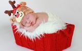 Ngây ngất với chùm ảnh bé sơ sinh trong trang phục Noel