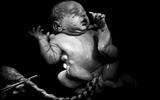 8 bức ảnh tuyệt đẹp chụp trẻ sơ sinh chỉ vài giây sau khi chào đời