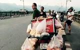 Hòa Bình: Bỏ lại xe bán bánh mỳ, người đàn ông gieo mình xuống sông Đà tự tử