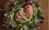 18 bức ảnh ngọt lim tim cho bạn thấy ý nghĩa thực sự của Giáng sinh