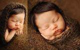 Ngắm không chớp mắt hình ảnh những em bé ngủ bên len
