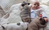 Ngẩn ngơ trước loạt ảnh siêu dễ thương của bé với cún cưng